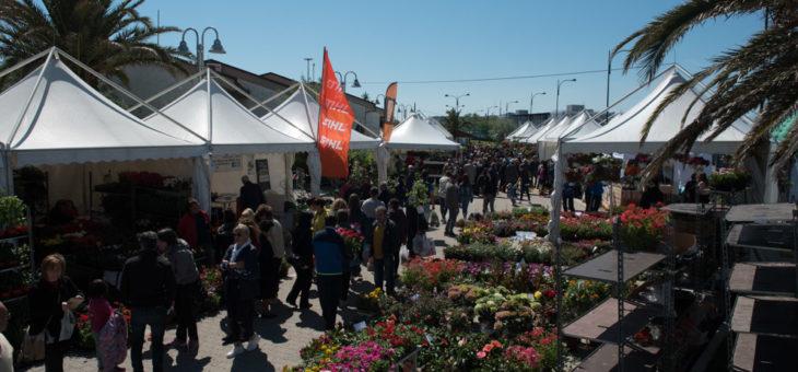 Mostra del Fiore Florviva 2017: uno straordinario successo