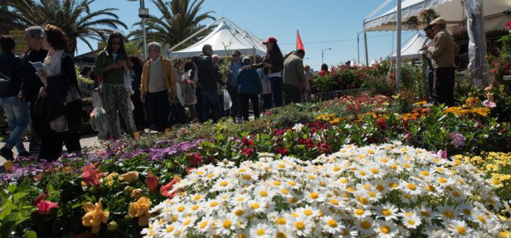 FlorPoesia alla Mostra del Fiore Florviva 2018